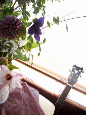 花とギター.jpg